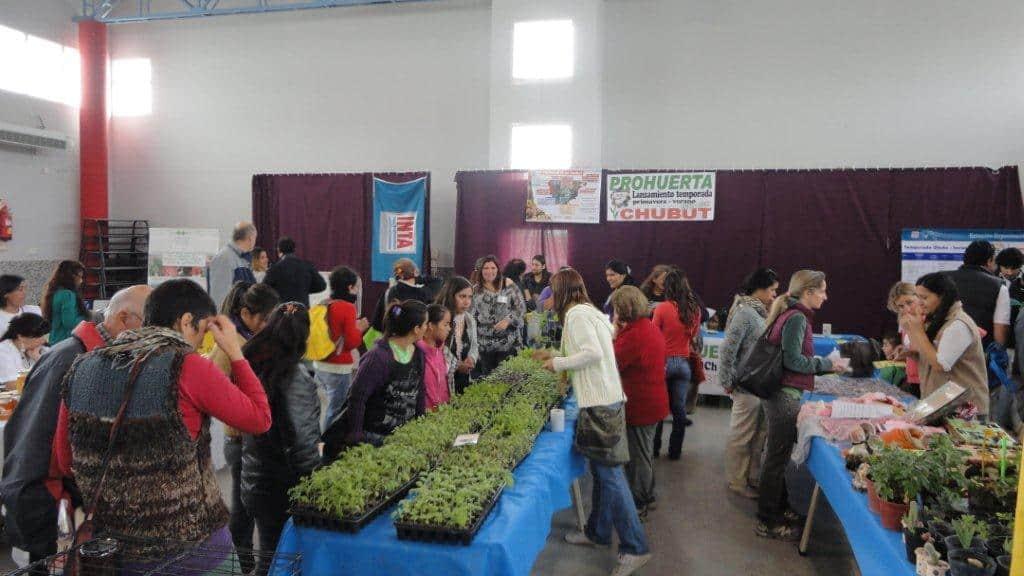 El desafío de crear huertas orgánicas en Puerto Madryn