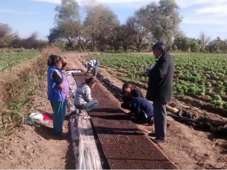 """Denuncian un intento de """"legalización del trabajo infantil"""" en Jujuy"""
