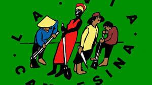 Qué es la Declaración Universal de los Derechos Campesinos