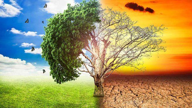 Cambio climático: qué es lo que hay que saber hoy y cuáles son los desafíos a futuro